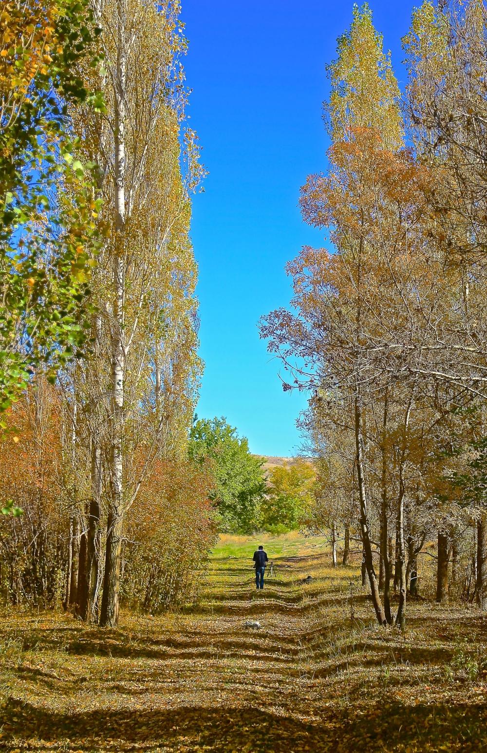 En güzel sonbahar enstanteleri 121