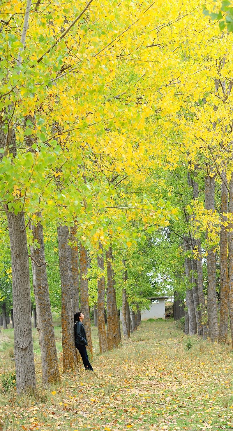 En güzel sonbahar enstanteleri 134
