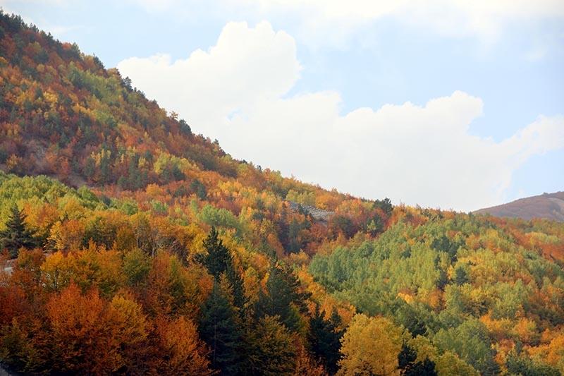 En güzel sonbahar enstanteleri 44
