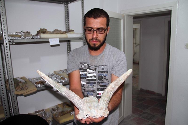 Kazı evi, milyonlarca yıllık fosillere ev sahipliği yapıyor 19