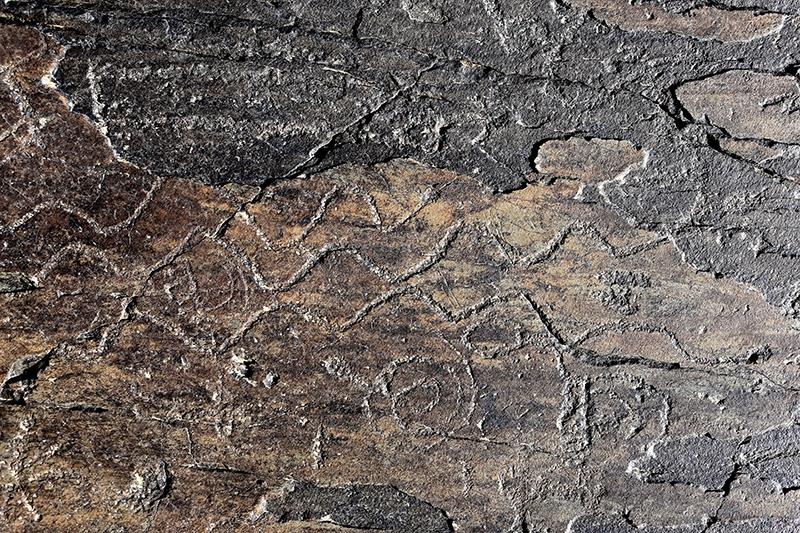 10 bin yıllık kaya resimleri kayıt altına alındı 10