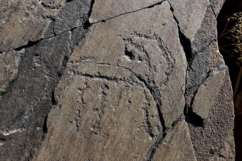10 bin yıllık kaya resimleri kayıt altına alındı 13
