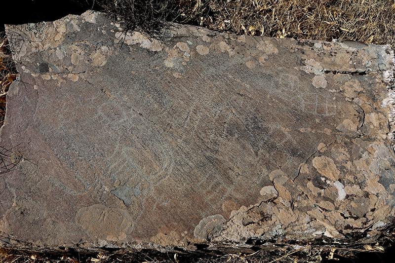 10 bin yıllık kaya resimleri kayıt altına alındı 15