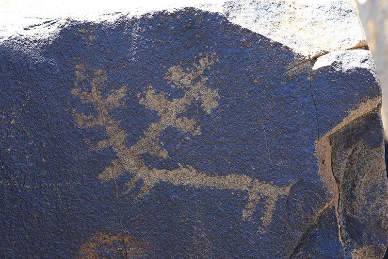 10 bin yıllık kaya resimleri kayıt altına alındı 19