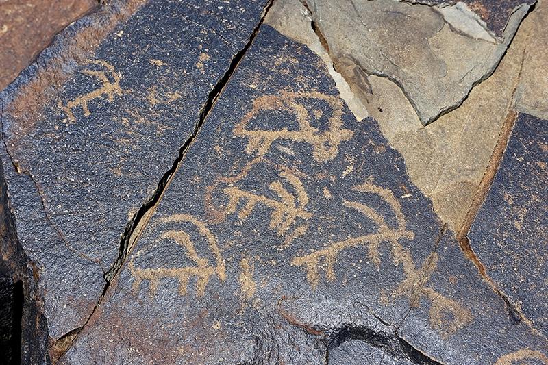 10 bin yıllık kaya resimleri kayıt altına alındı 23