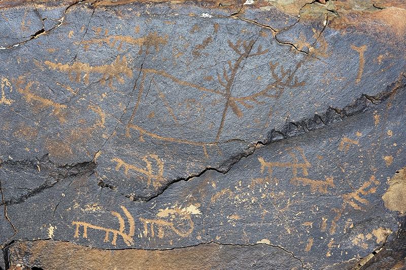 10 bin yıllık kaya resimleri kayıt altına alındı 24