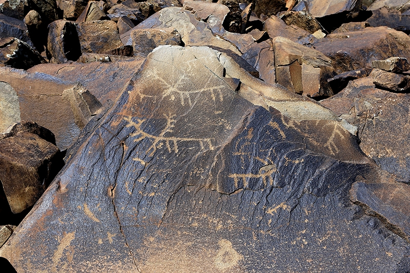 10 bin yıllık kaya resimleri kayıt altına alındı 6