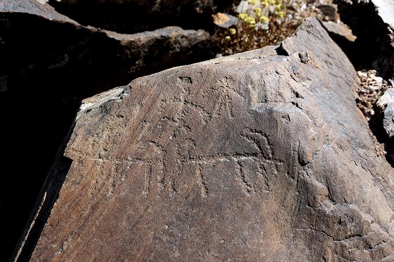 10 bin yıllık kaya resimleri kayıt altına alındı 7