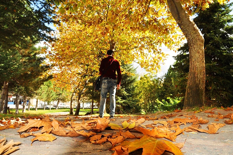 En güzel sonbahar fotoğrafları-2 30