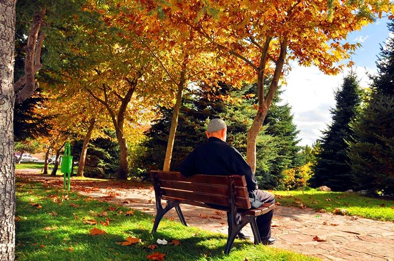 En güzel sonbahar fotoğrafları-2 32