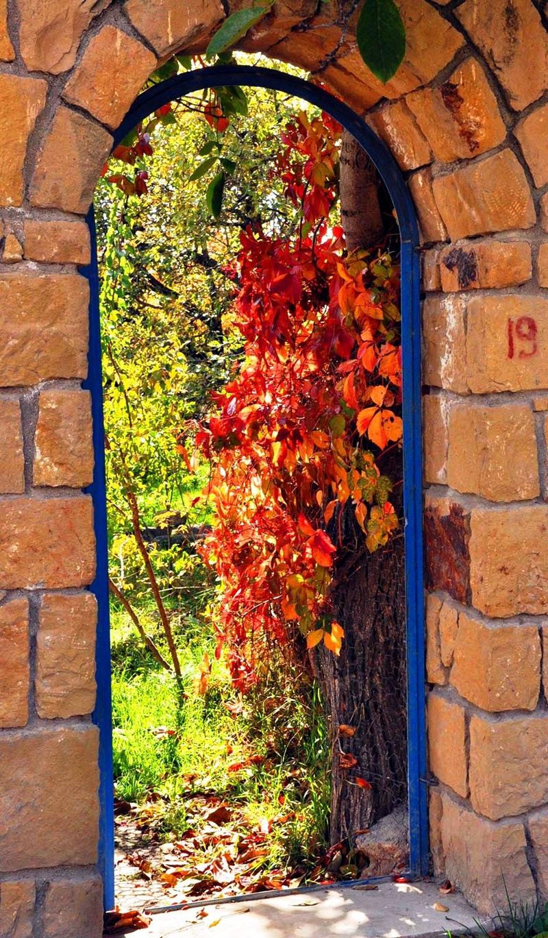 En güzel sonbahar fotoğrafları-2 38