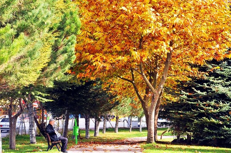 En güzel sonbahar fotoğrafları-2 42