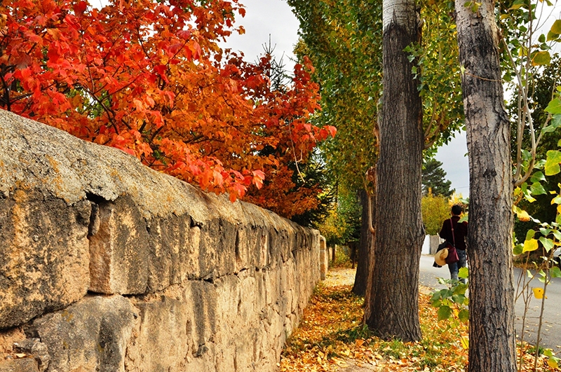 En güzel sonbahar fotoğrafları-2 51