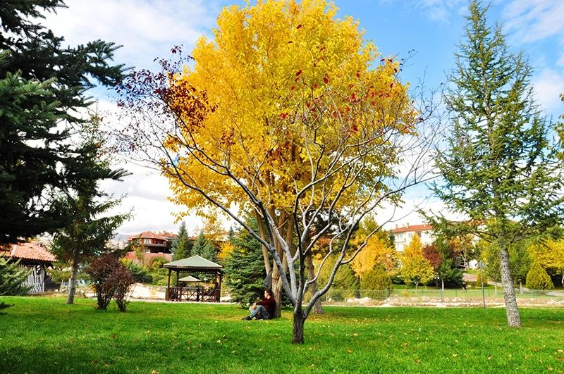 En güzel sonbahar fotoğrafları-2 52