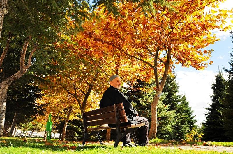 En güzel sonbahar fotoğrafları-2 54