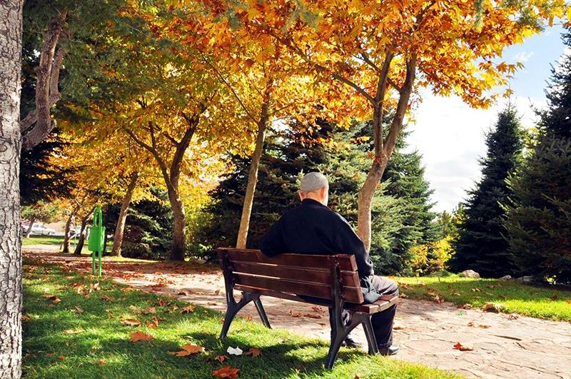 En güzel sonbahar fotoğrafları-2 55