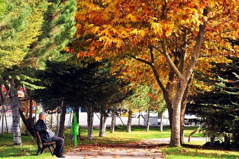 En güzel sonbahar fotoğrafları-2 57
