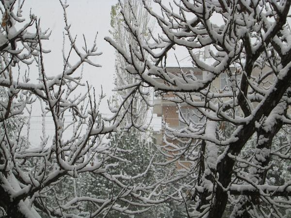 Konya'dan kar manzaraları 7