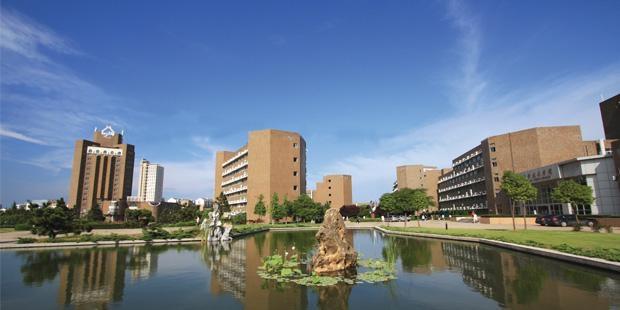 Gelişen ülkelerdeki en iyi üniversiteler 41