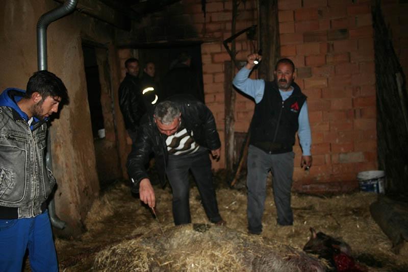 Konya'da yangın 9