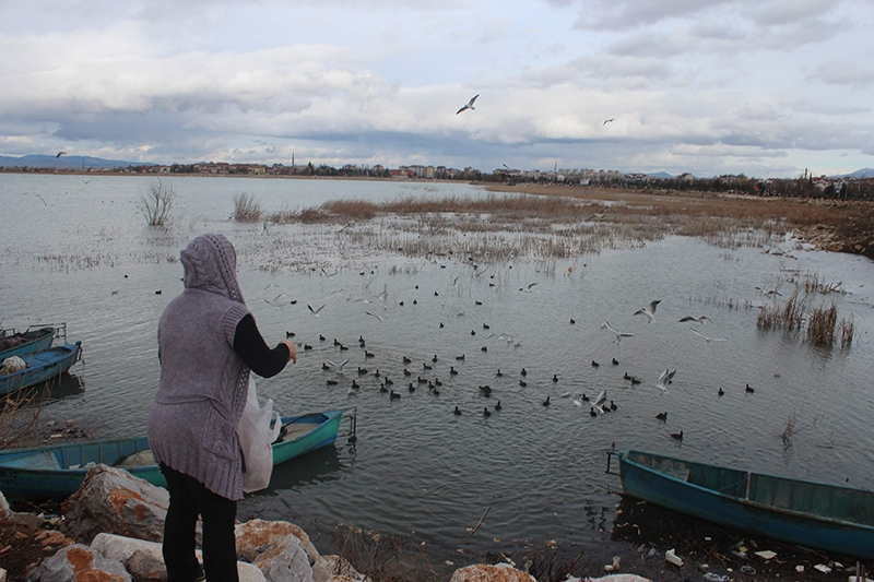 Yağışlar Beyşehir gölüne yaradı 9