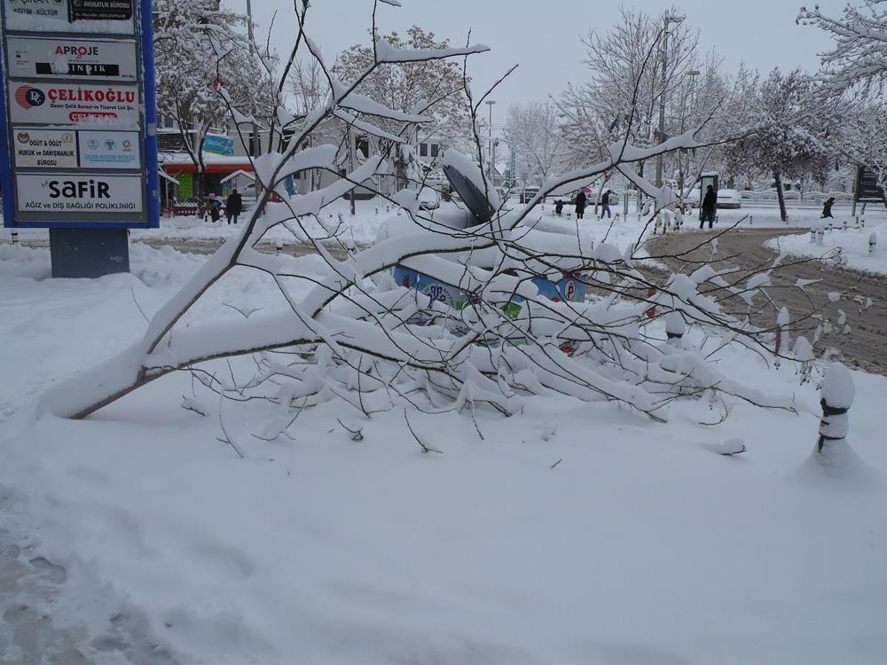 Konya'dan Kar Manzaraları 1