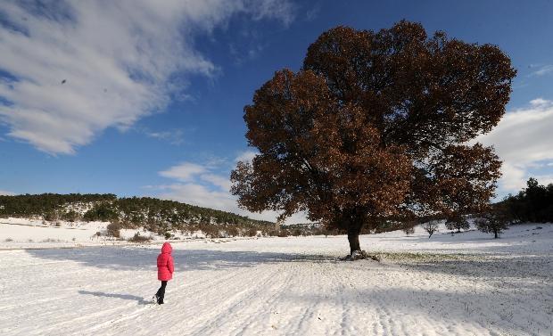 Türkiye'den kar manzaraları 15