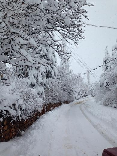 Türkiye'den kar manzaraları 6