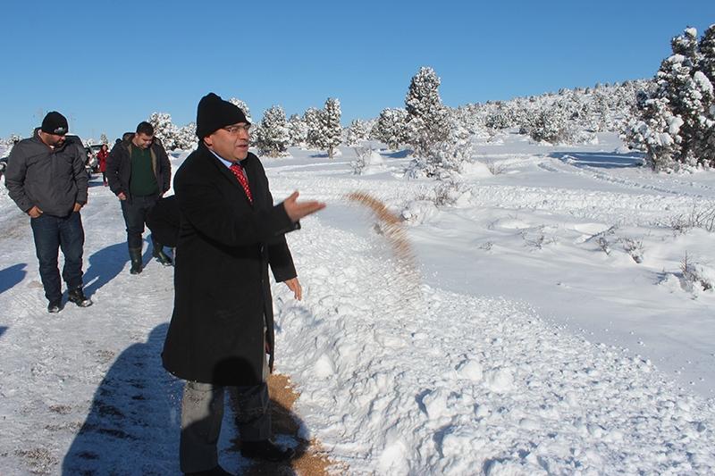 Beyşehir Gölü kıyıları buz tuttu 10