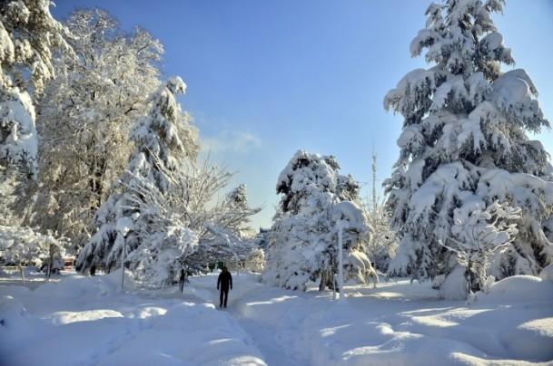 Yurtta kar yağışı ve soğuk etkili oluyor 9