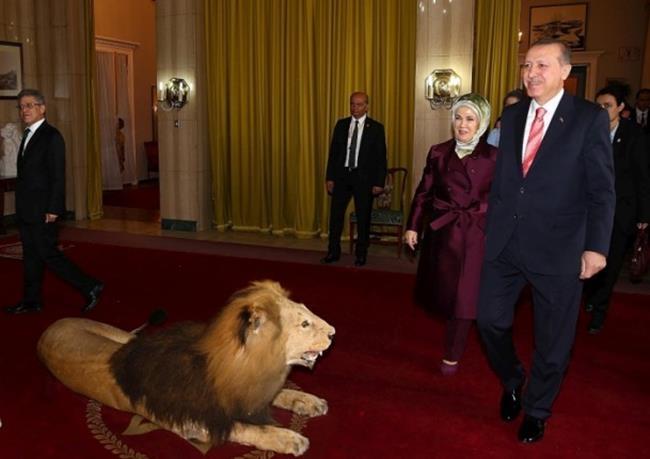 Emine Erdoğan Etiyopya'da 5