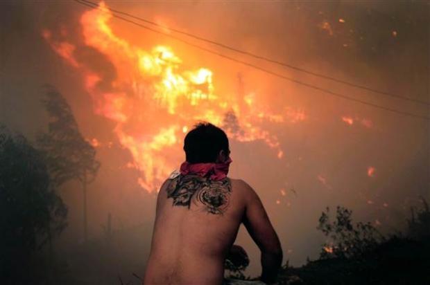 Şili'de büyük orman yangını 2