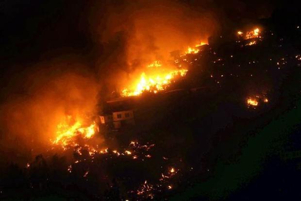 Şili'de büyük orman yangını 3
