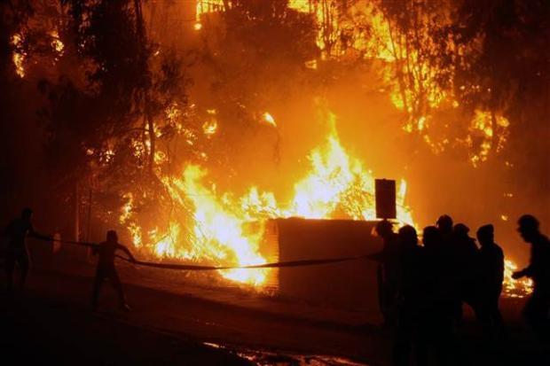 Şili'de büyük orman yangını 9