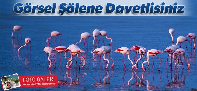 """Düden Gölü'nün zarif misafirleri """"flamingolar"""" 10"""