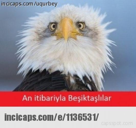 Beşiktaş - Torku Konya Capsleri 2