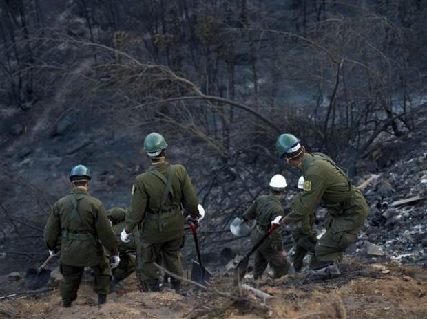 Şili'deki yangın kontrol edilemiyor 19