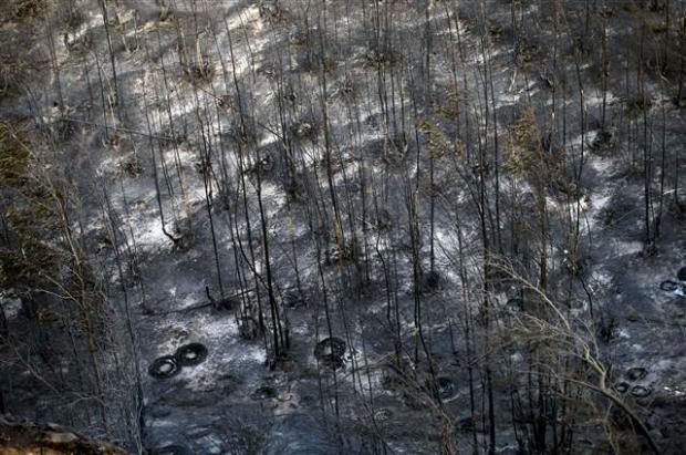Şili'deki yangın kontrol edilemiyor 21