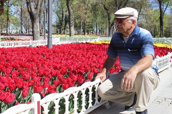 Konya'da lale zamanı 14