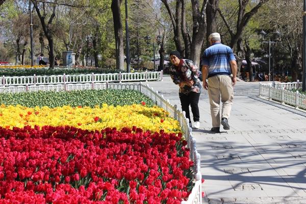 Konya'da lale zamanı 15