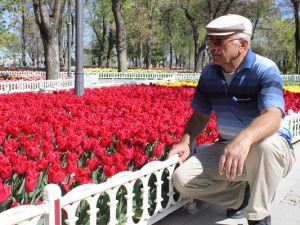 Konya'da lale zamanı