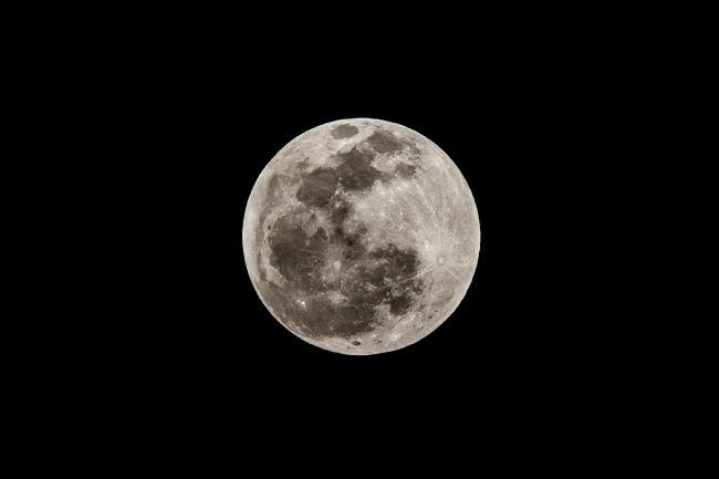 Ay kana bulandı! 3