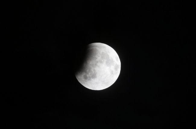 Ay kana bulandı! 4