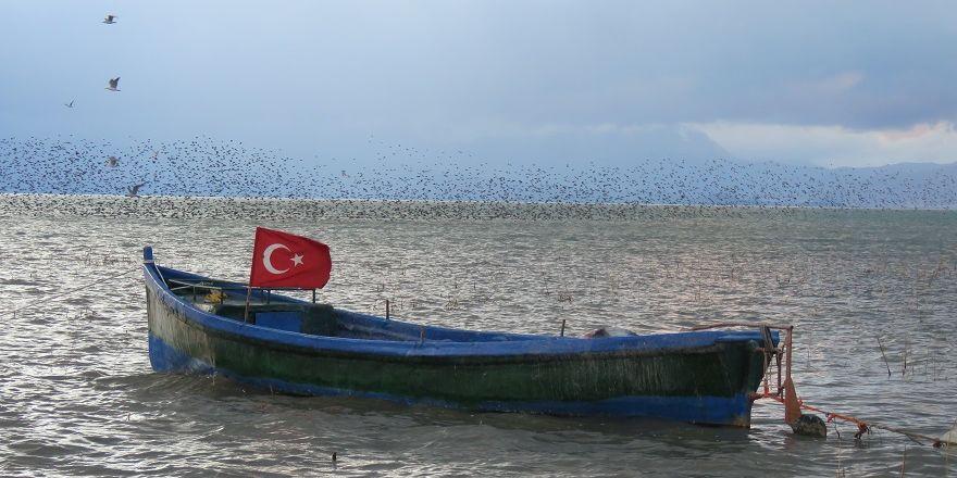 Beyşehir Gölü'nde sığırcıkların görsel şöleni