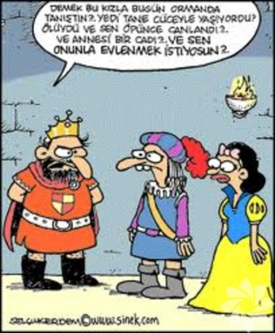 Gülme krizine sokan evlilik karikatürleri 22