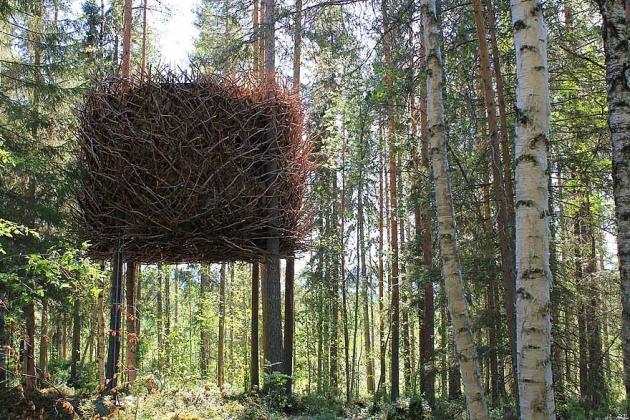 Birbirinden harika ağaç evler 1