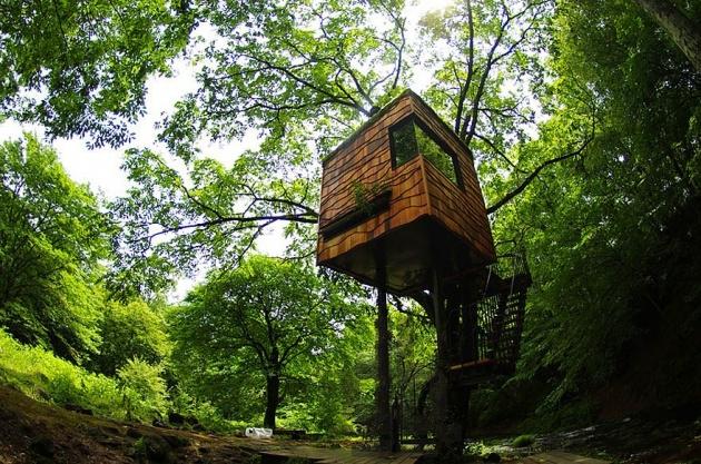 Birbirinden harika ağaç evler 10
