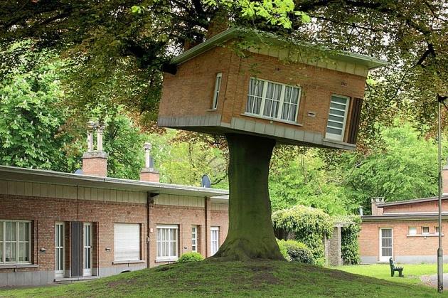 Birbirinden harika ağaç evler 11