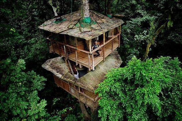 Birbirinden harika ağaç evler 13
