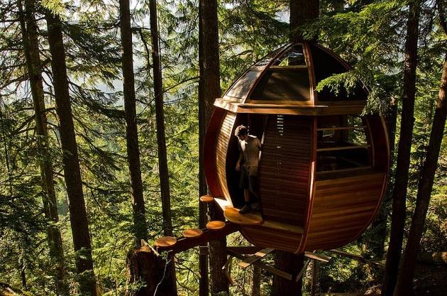Birbirinden harika ağaç evler 2